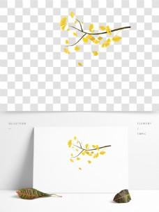 银杏树枝上黄黄的叶子