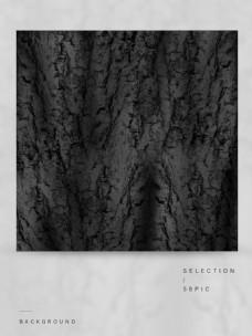 松树皮背景底纹图片