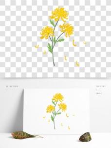 手绘重阳节黄色雏菊菊花绿叶素材