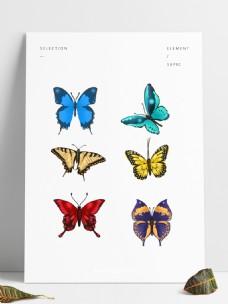 可商用手绘飞舞五彩蝴蝶套图模板